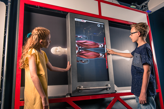 Two young children looking at a body scan of the human body showing muscles.