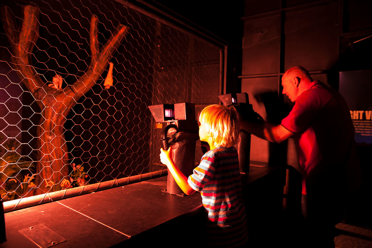 A young boy looking at a tree through night vision lenses in a dark room.