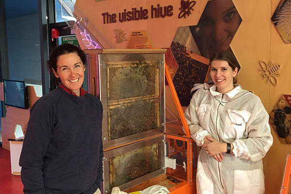 Two women standing next to a bee colony filled with bees in an indoor hive.