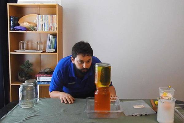 A man looking intently at two jars of coloured liquid stacked on top of one another for an experiment.