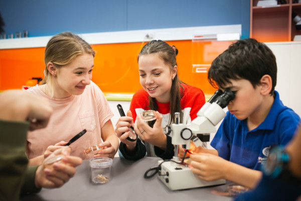 Three children looking through microscopes in a lab.