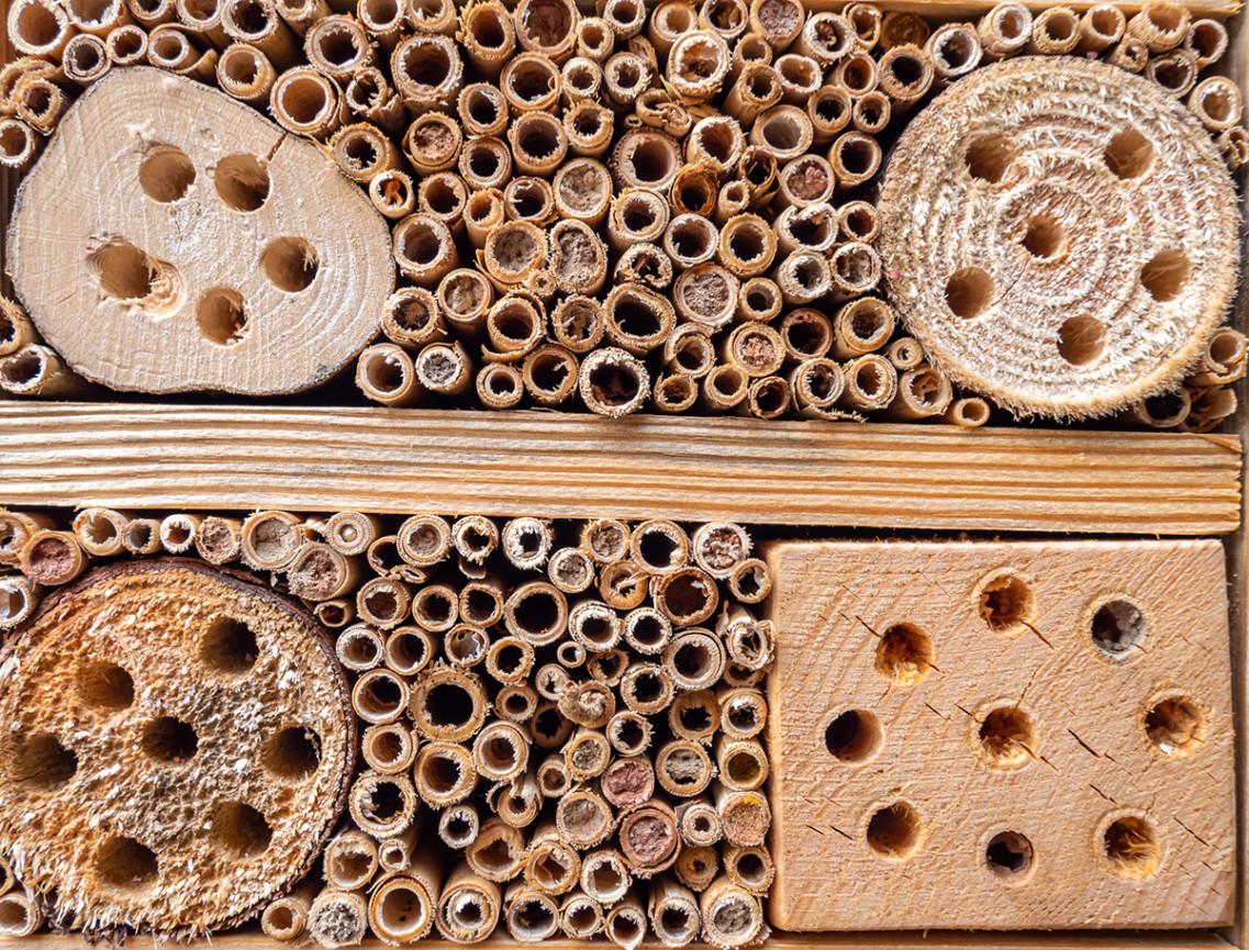 Closeup of an insect hotel with 4 logs that have holes drilled into them and a series of bamboo tubes