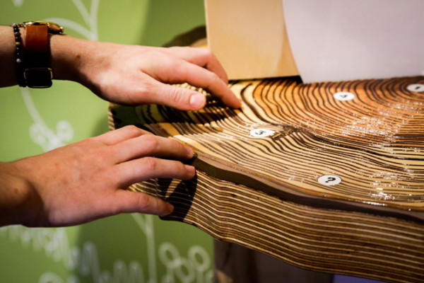 Hands touching wooden tree rings surface.