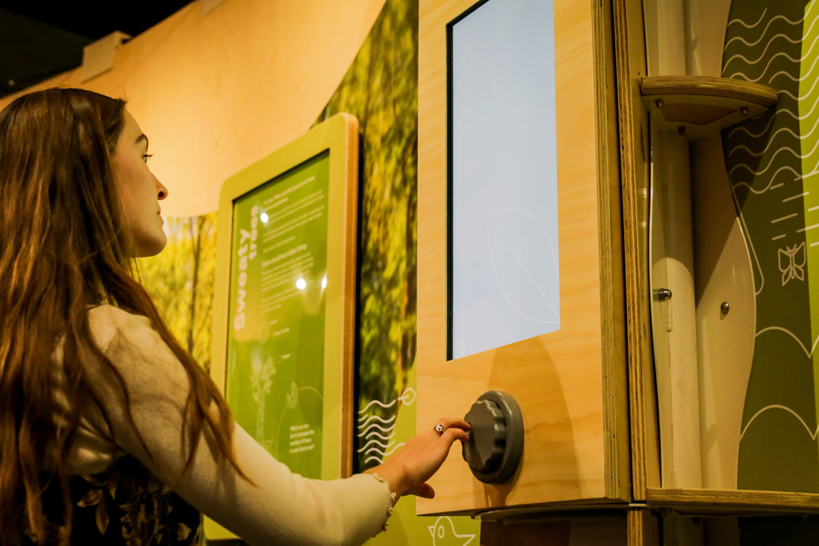 A girl turning a wheel in front of a screen.